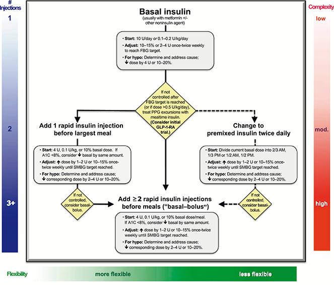 Tema 2. Manejo global y ágil del paciente con diabetes tipo 2